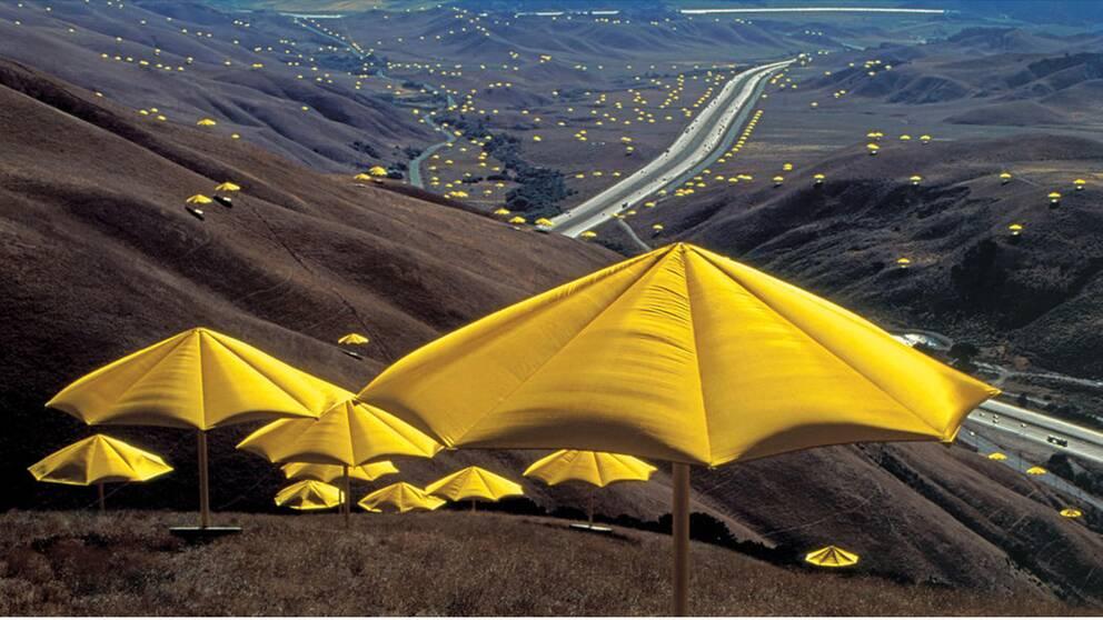 Tusentals paraplyer placerades ut i landskap i Kalifornien och i Japan Christos och Jeanne-Claudes projekt The Umbrellas.