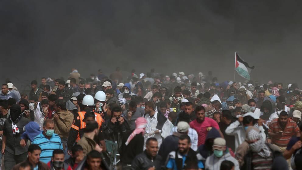 Palestinier i Gaza protesterar för fjärde fredagen i rad vid gränsen till Israel. 36 protestanter har dödats av israeliska styrkor sedan 30 mars, enligt det palestinska hälsodepartementet.