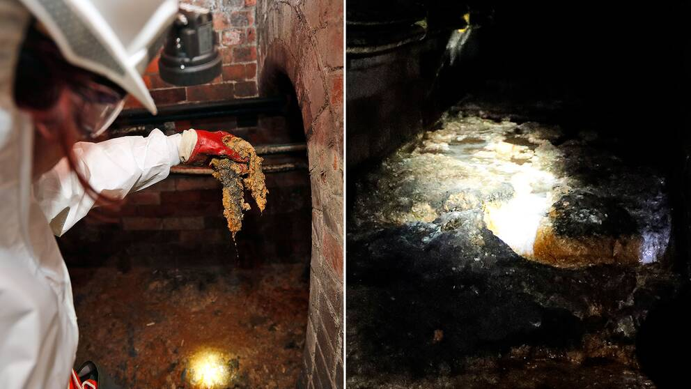 Fettklumpen i Londons kloaker i höstas.