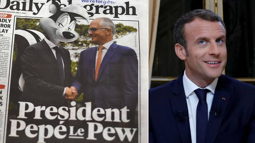 """The Daily Telegraphs förstasida med Macron som en skunk tillsammans med Malcolm Turnbull, samt """"den ritkiga"""" Emmanuel Macron."""