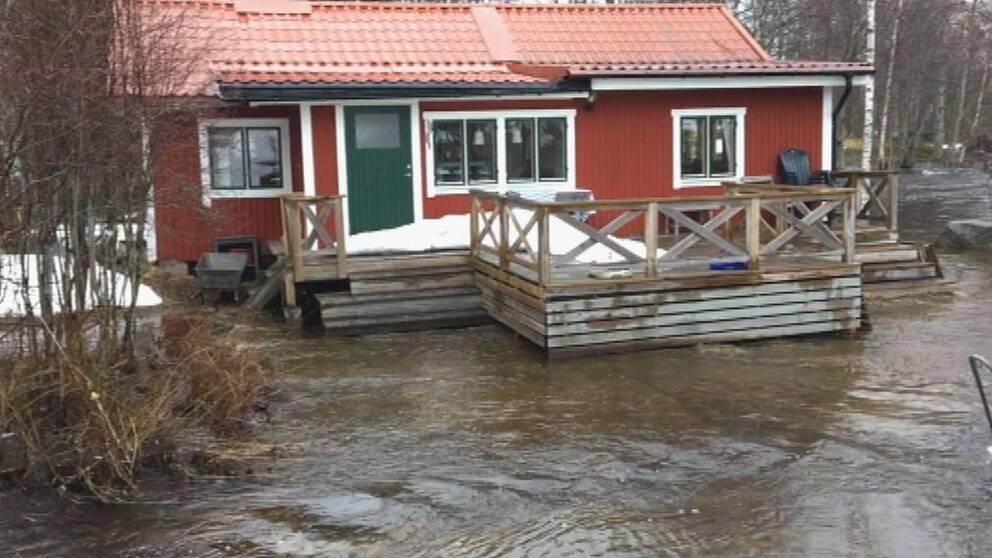 Vårfloden förväntas kulminera nästa vecka i Västernorrland.