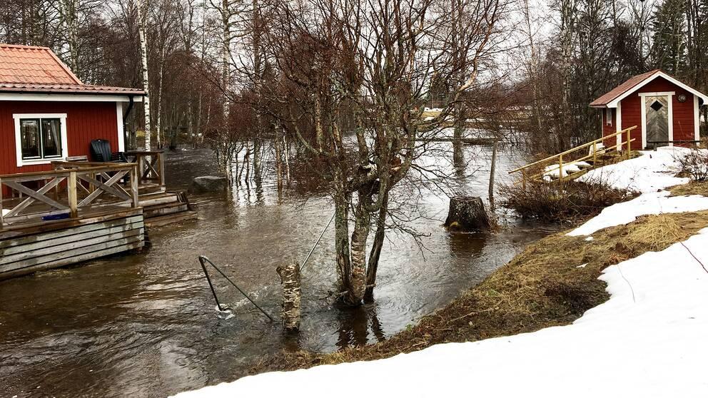 Nivåerna fortsätter stiga främst i små och medelstora vattendrag och än är inte kulmen nådd enligt SMHI.