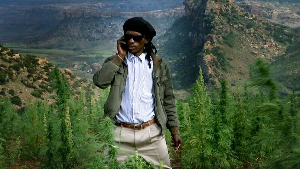 Kotsoana, en av många marijuanaodlare som hoppas få en licens för odlande av medicinsk marijuana.