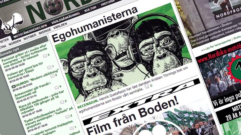 JK har hittat 103 fall av hets mot folkgrupp på den nazistiska sajten Nordfront. Nu åtalas ansvarige utgivare.