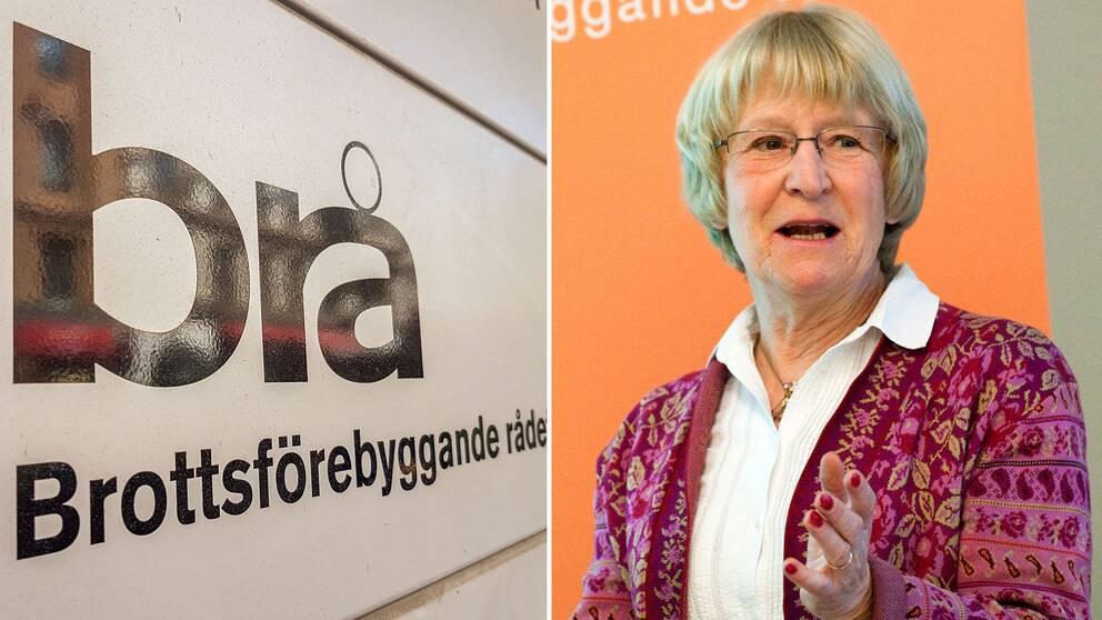 – Vi överväger att studera i vilken utsträckning utrikes födda är överrepresenterade, säger Stina Holmberg, utrednings- och forskningsråd på Brå.