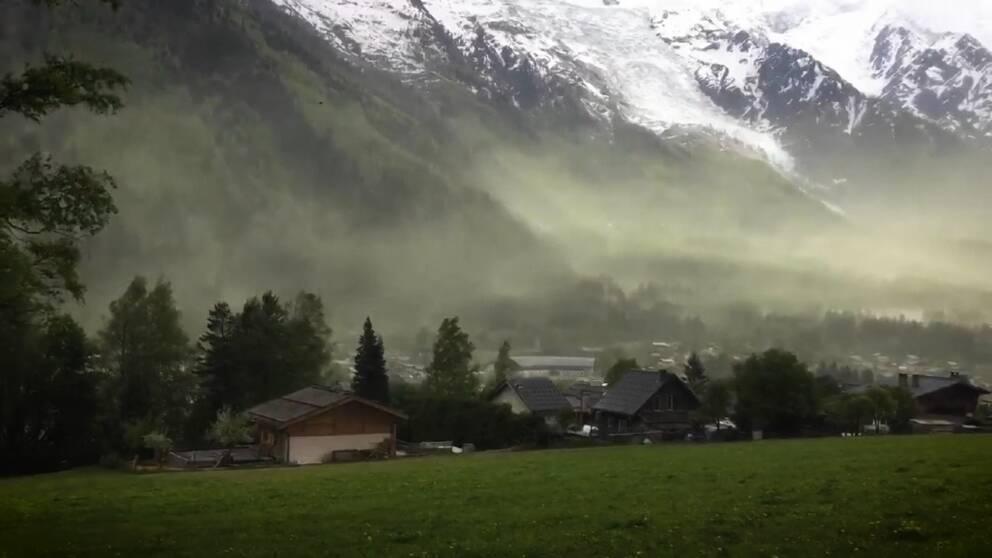 Bergsluttningarnas träd sprider pollen över hela dalen i Chamonix, Frankrike.