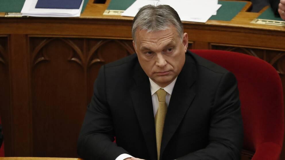 Ungerns premiärminister Viktor Orbán har valts om till en tredje mandatperiod.