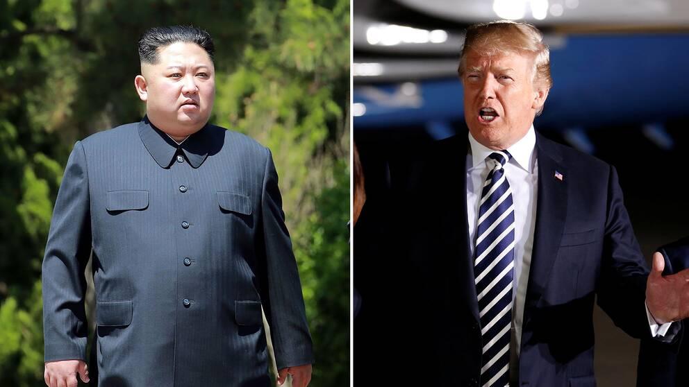 Nordkoreas diktator Kim Jong-Un och USA:s president Donald Trump möts för första gången i Singapore den 12 juni.