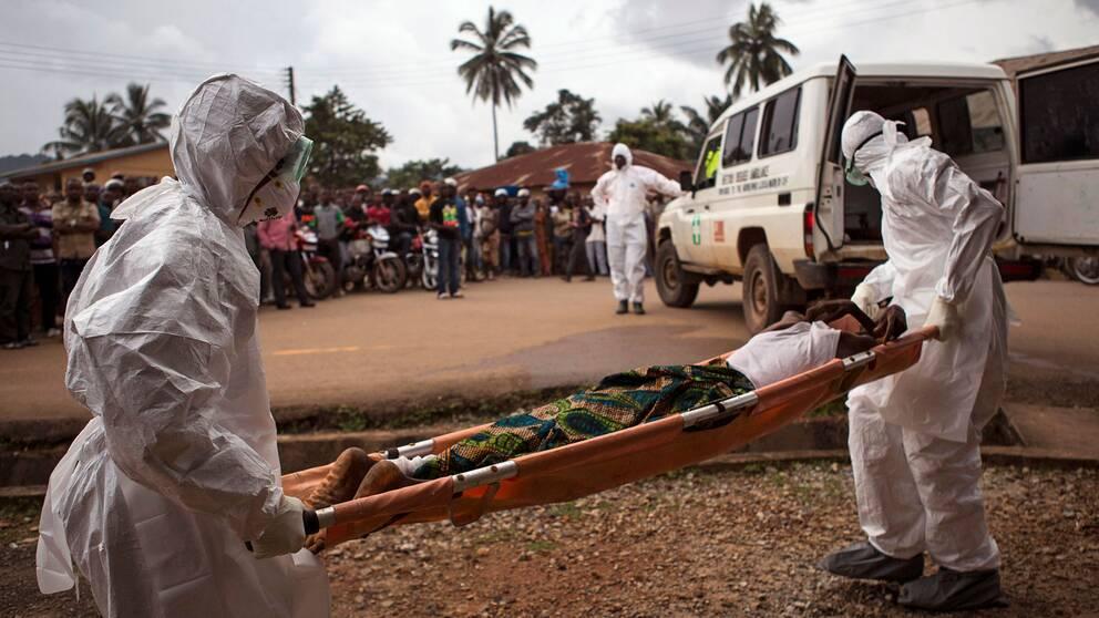 Arkivbild från Sierra Leone 2014. Två personer i heltäckande dräkter bär en misstänkt ebolapatient till en ambulans.