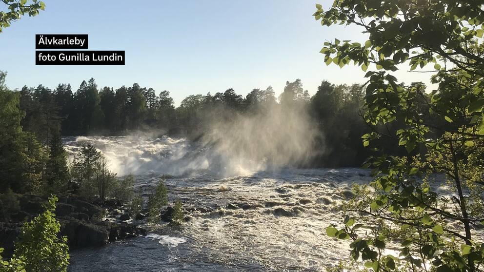 Full fart på Dalälven i Älvkarleby Uppland.