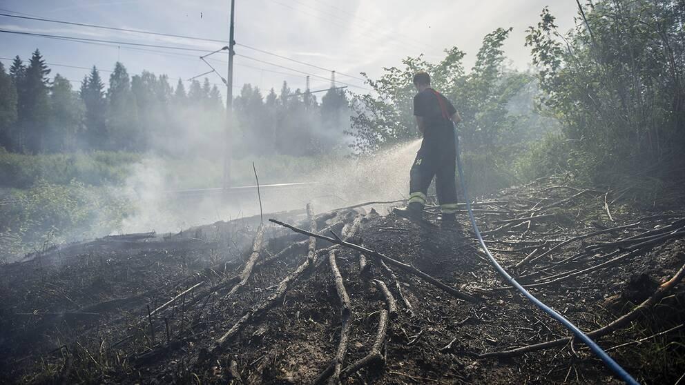 brandman med slang balnd svedd växtlighet