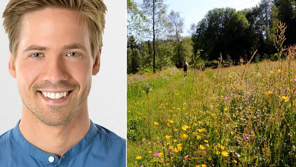 Kollage. Porträttbild på meteorolog Nils Holmqvist/sommarblomster på äng