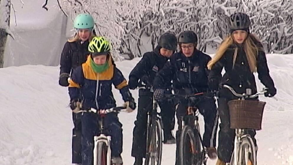 grupp barn com cyklar på vintern