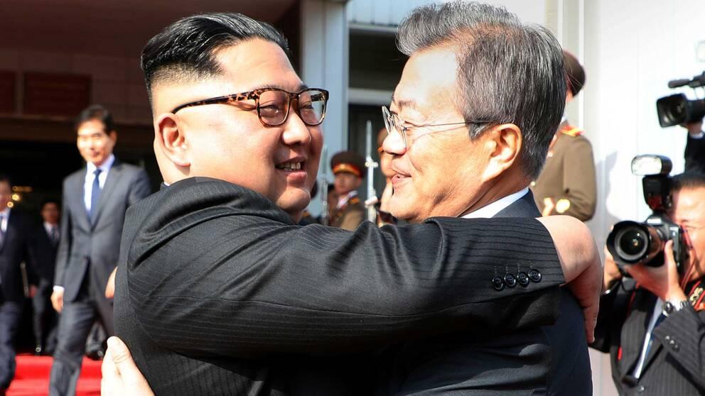 Febrila diplomatiska aktiviteter