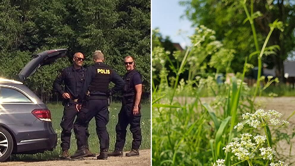 Mord i Torup Hylte
