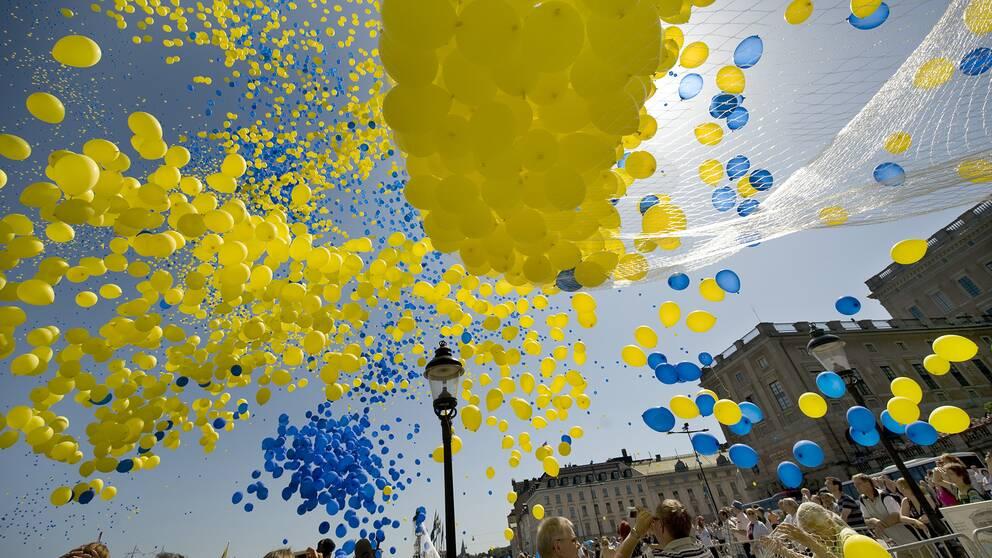 Ballonger i gult och blått.
