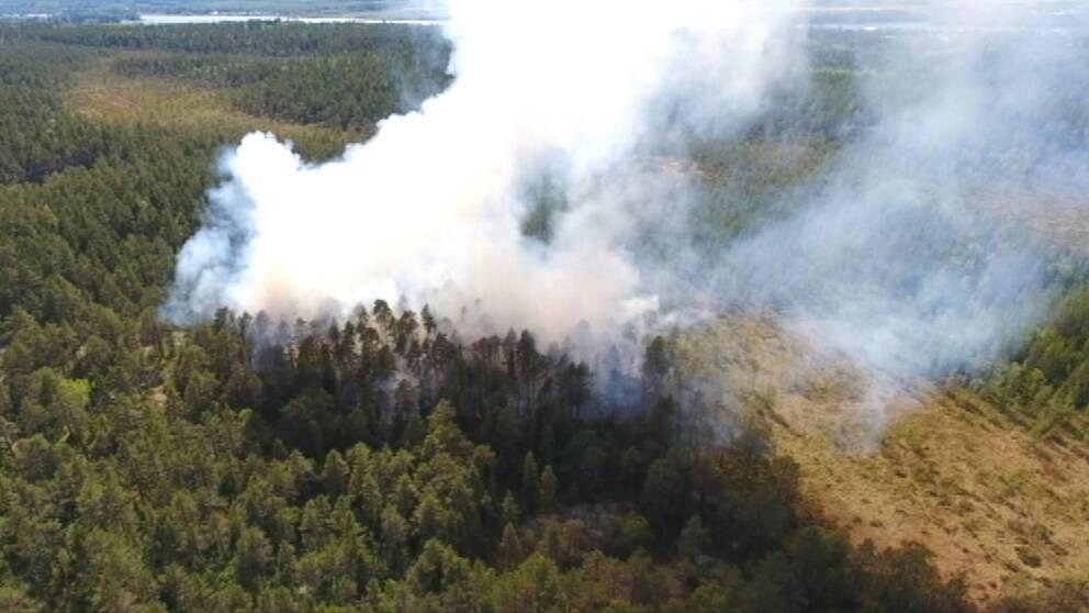flygbild över skogsområde, kraftig rök