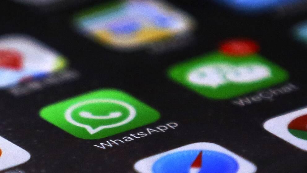 Bild på en mobilskärm och WhatsApp-appen.