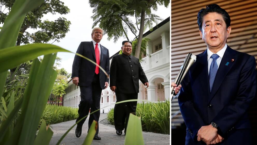 USA:s president Donald Trump fick till ett möte i Singapore med Nordkoreas diktator Kim Jong-Un, nu hoppas Japans premiärminister Shinzo Abe på en liknande träff.