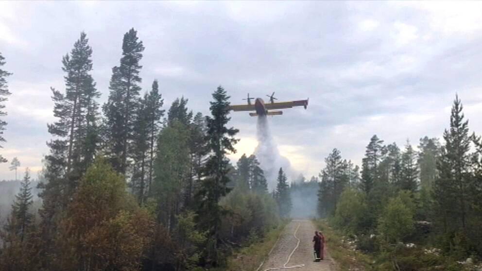 brandflyg vattenbombar skog vid grusväg, små figurer på vägen ser på
