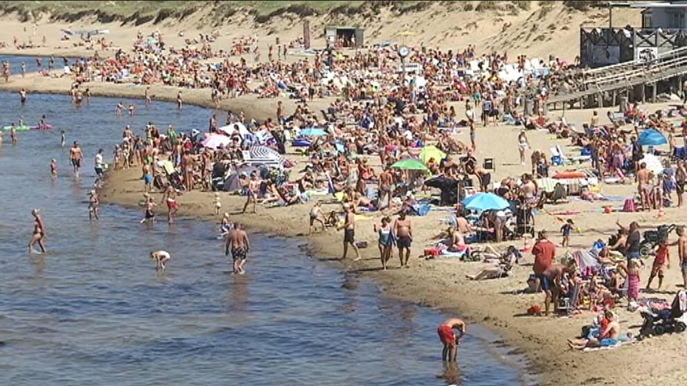 Tylösands strand med mycket folk