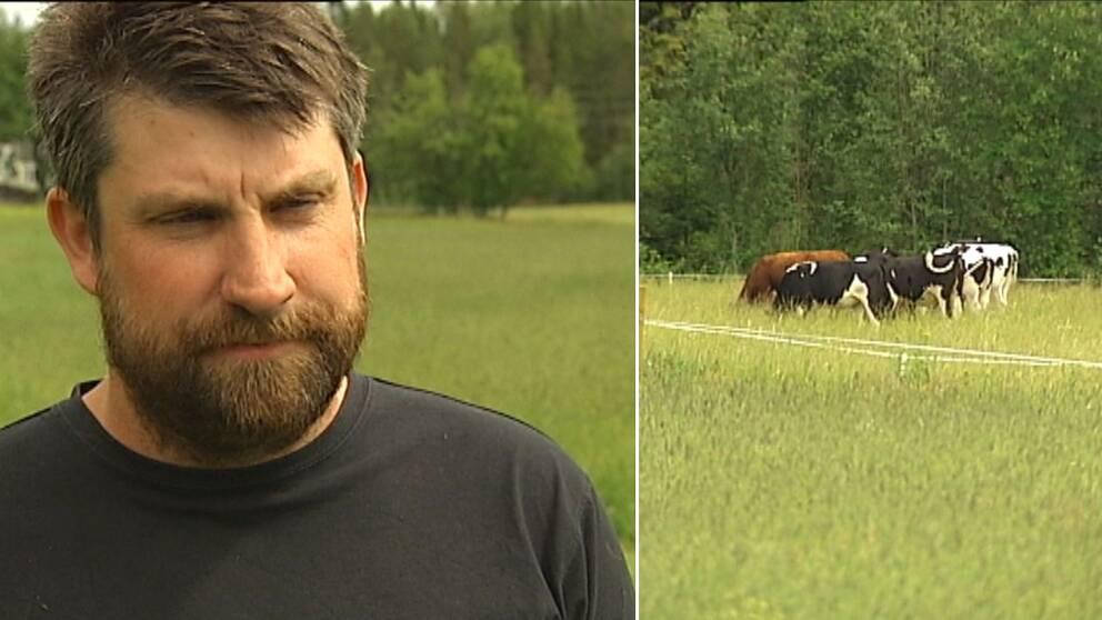 Lantbrukaren Örjan Henriksson berättar om vad som händer om regnet inte kommer snart.