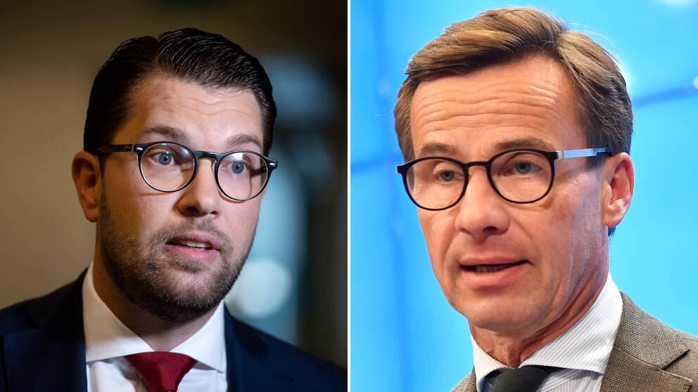Sverigedemokraterna står mycket nära den borgerliga Alliansen i tunga politiska sakfrågor. Det visar riksdagspartiernas svar i SVT:s Valkompass.
