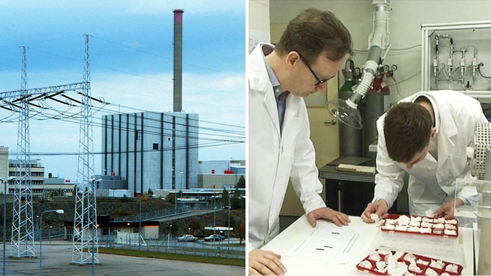 Forskare varnar for risker med ryskagt karnkraftverk