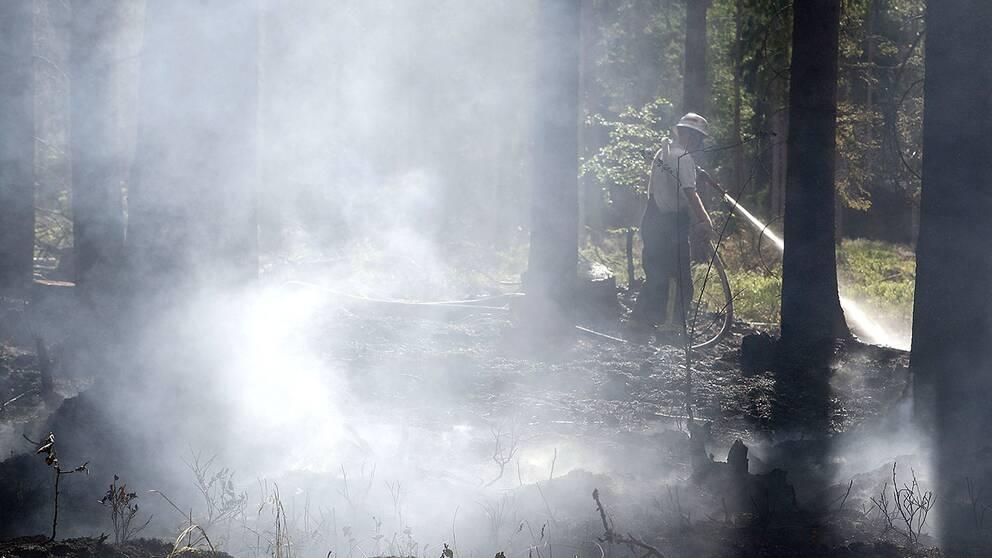 Nya brander i norrland