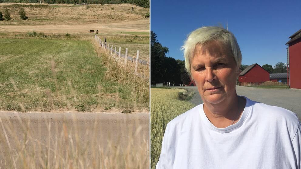 En torr åker, samt en bild på lantbrukaren Tina Rudolphsson.