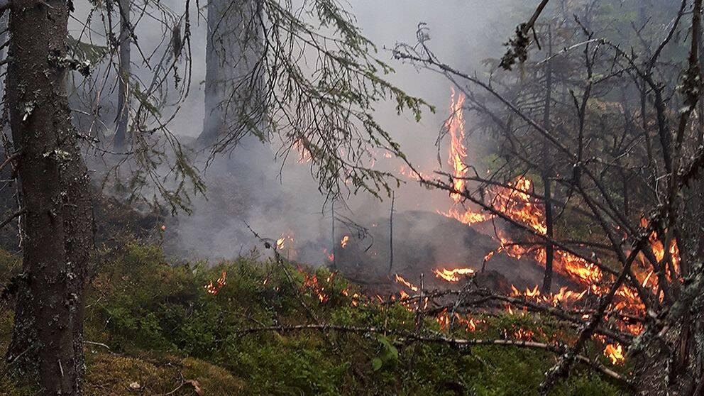 Bränder breder ut sig i landet