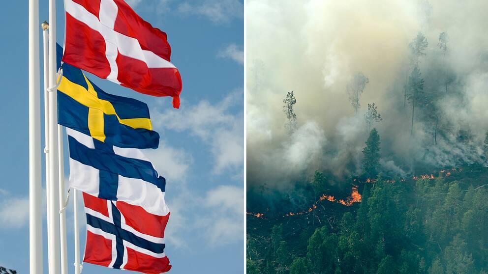 Skogsbrand utom kontroll nara aten