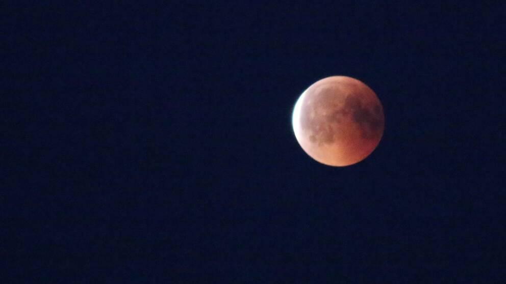 Månen fotad av Sara Flink i Åtvidaberg, Östergötland.