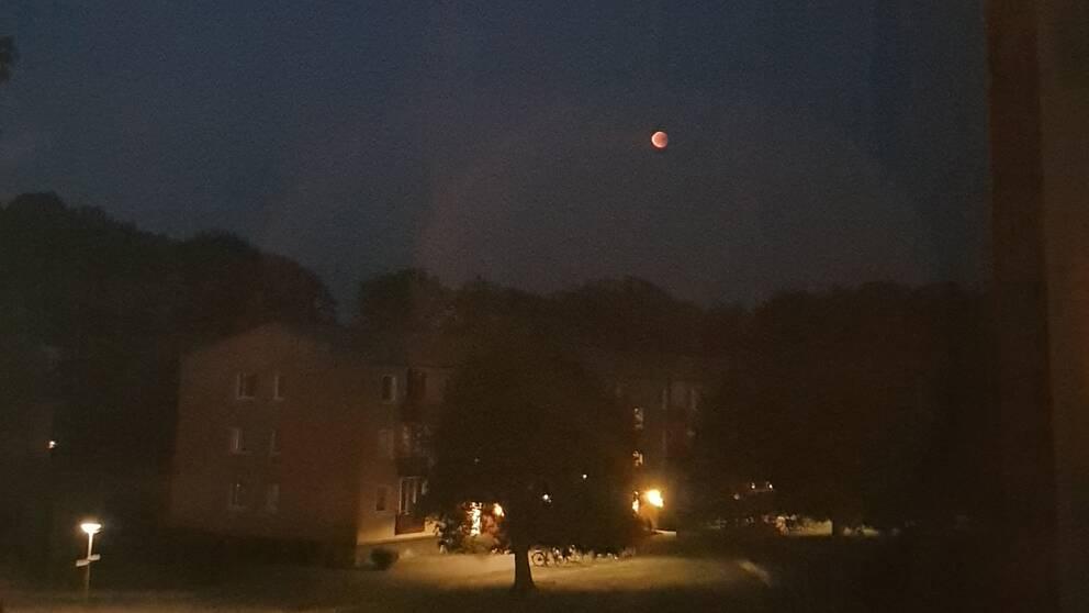 Blodmånen fotad av Alexander Wikjander i Motala.