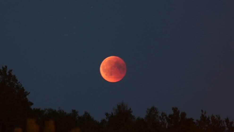 Månen fotad av Christian Enström i Lindome söder om Göteborg strax efter klockan 23 på fredagskvällen.