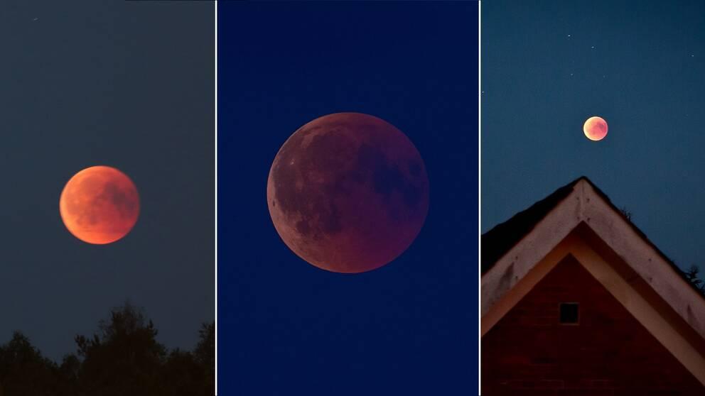 Här är läsarnas egna bilder på blodmånen. I videoklippet kan du se Nasas film av månförmörkelsen och blodmånen.