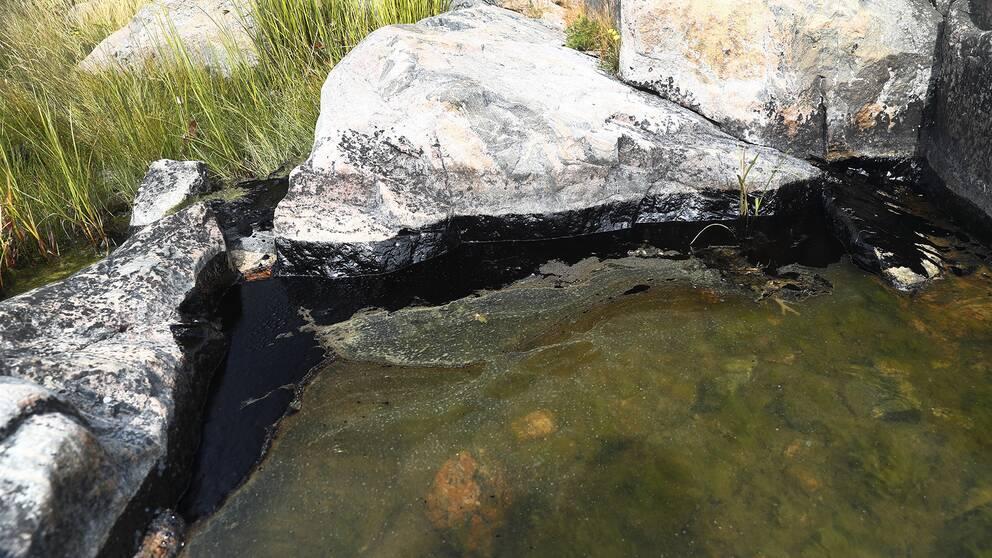 Olja i vattnet vid klipporna runt Flatvarps hamn.