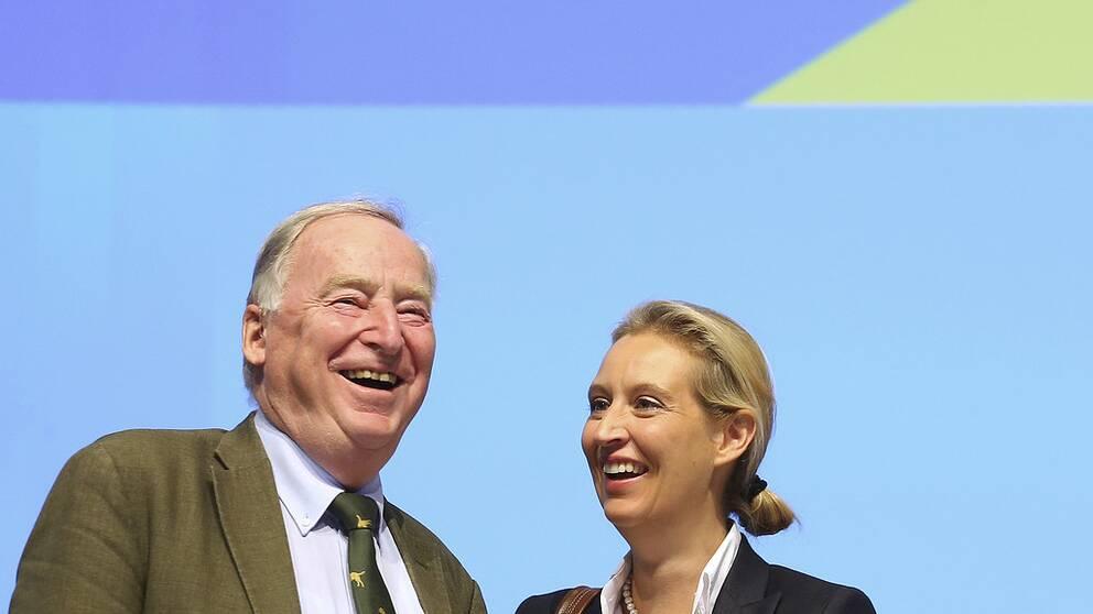 AFD-ledarna Alexander Gauland och Alice Weidel gläds åt de höga siffrorna för partiet i opinionsmätningarna.