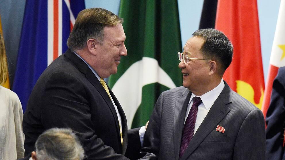 Trots muntra miner när USA:s och Nordkoreas utrikesministrar möttes var tonläget frostigt när ministrarna gjorde uttalanden var för sig.