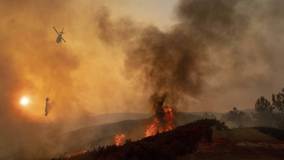 Branden rasar i norra Kalifornien, norr om San Francisco.