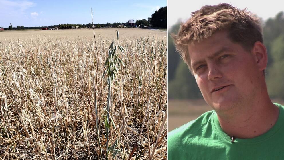 Emil Jansson, en av alla lantbrukare i Sverige som har det tufft just nu.