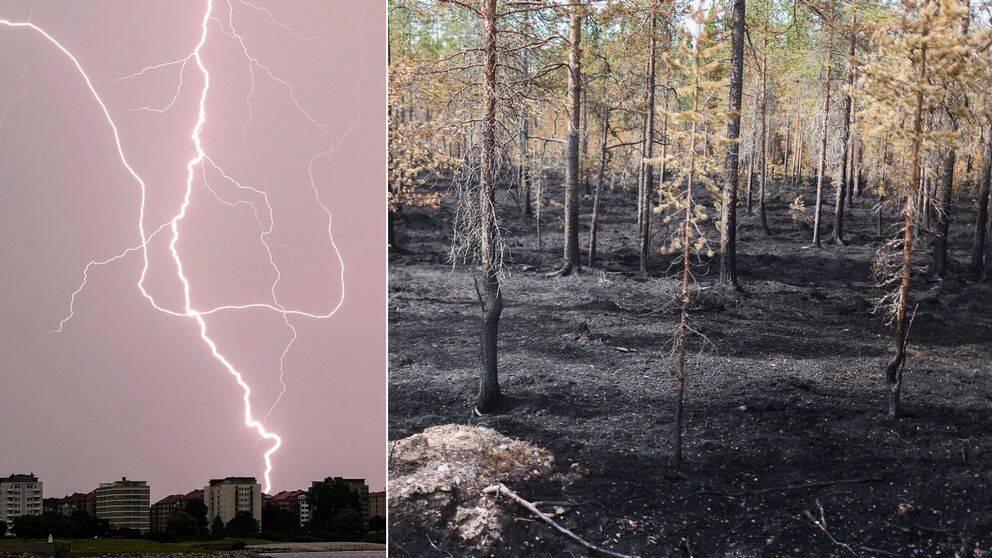Blixtnedslag och eldad skog.