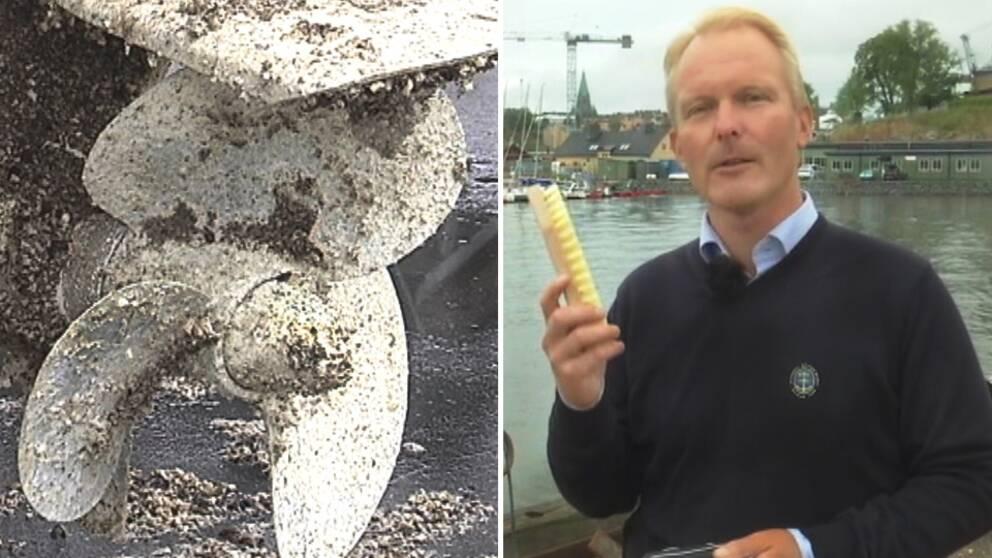 Peter Karlsson är verksamhetschef på Svenska Båtunionen och tipsar om hur man får bort havstulpaner från skrovet.