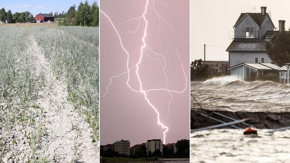 En åker som är snustorr, lila himmel och stora, kraftiga blixtar, ett hus nära vattnet med vågor som slår högt.
