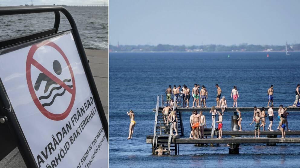 Kommunen avråder från bad vid Scaniabadet efter rekordhöga halter av e-colibakterier i vattnet.