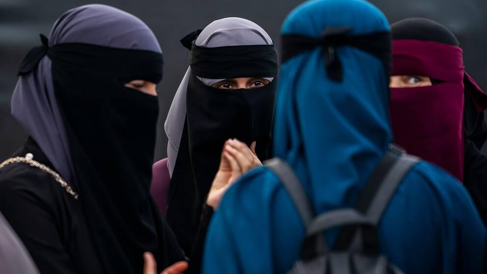 Kvinnor i niqab diskuterar med varandra.