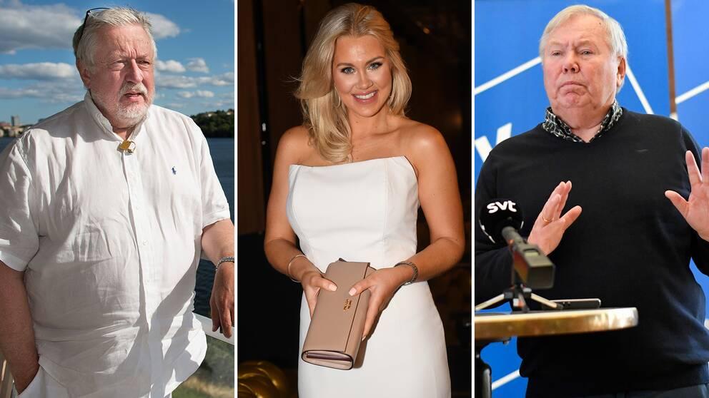 Leif GW Persson, Isabella Löwengrip och Bert Karlsson är några av de kändisar som ställt sig bakom partierna.