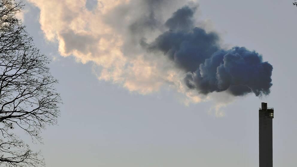 Fokusera pa klimatet