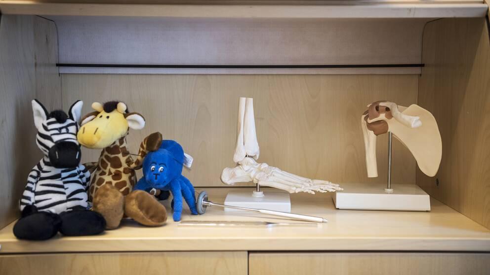 Inne hos en läkare (inte den åtalade) bilder på gosedjur och skelettdelar.