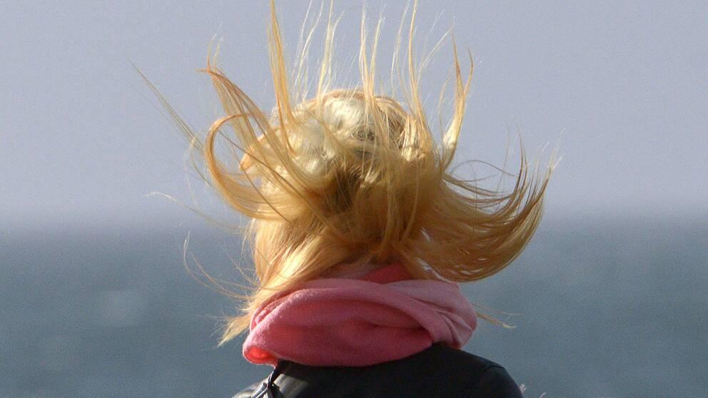 Snudd på stormvindar väntas dra in över Småland under fredagen.
